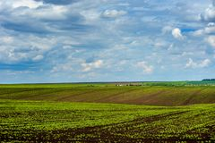 Jordbruks- kullelandskap med härlig himmel Arkivfoton