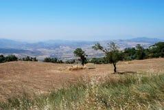 Jordbruks- land, Andalusia, Spanien. royaltyfri bild