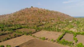 Jordbruks- land i indonesia stock video
