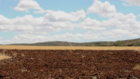 Jordbruks- land och blå himmel stock video