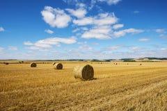 Jordbruks- landskap Royaltyfri Foto