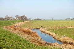 Jordbruks- landskap i Holland Royaltyfri Fotografi