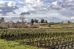 Jordbruks- landskap i lantliga Oregon Arkivfoto