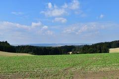 Jordbruks- landskap med fält och skogen Arkivfoton