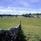 Jordbruks- landskap Schweiz Jura Weid Barrier Trees arkivbild