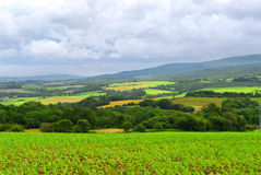 jordbruks- liggande royaltyfri bild