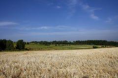 jordbruks- liggande Arkivfoton
