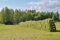 jordbruks- liggande royaltyfri fotografi