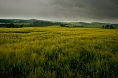 jordbruks- liggande Fotografering för Bildbyråer