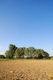 jordbruks- liggande Royaltyfria Bilder