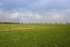 jordbruks- liggande Royaltyfria Foton