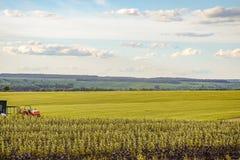 jordbruks- liggande arkivbild