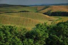 jordbruks- liggande Söder av Slovakien, Europa royaltyfri foto