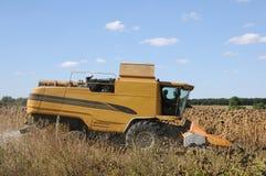 Jordbruks- maskineri (combine) i skörd Royaltyfri Fotografi