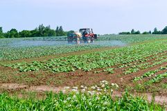 Jordbruks- maskinsprejare, bearbeta av fält av kemikalieer, skyddande fält mot plågor fotografering för bildbyråer