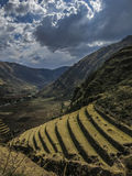 Jordbruks- terrasser i den sakrala dalen av incasna, Peru Royaltyfri Bild