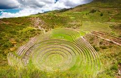 Jordbruks- terrasser i Moray, Cusco, Peru Arkivbilder
