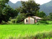 jordbruksmark Arkivbild