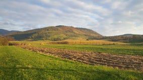 Jordbruksmark i Chiscau Rumänien Arkivfoto