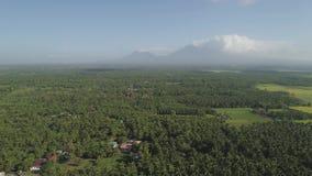 Jordbruksmark i Filippinerna för ett berglandskap, Luzon lager videofilmer