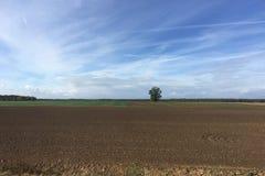 Jordbruksmark i Litauen Fotografering för Bildbyråer