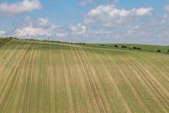 Jordbruksmark i Sussex Arkivbilder