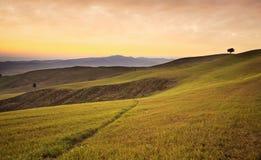 Jordbruksmark nära Volterra, Rolling Hills på solnedgång lantlig liggande Arkivfoto
