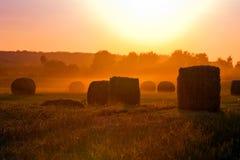 Jordbruksmark och den storartade solnedgången. Royaltyfri Bild