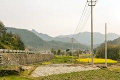 Jordbruksmark och kulle Royaltyfri Bild