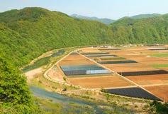 Jordbruksmark och ström Arkivbild