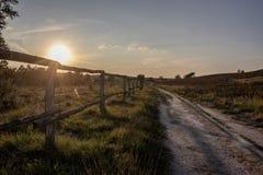 Jordbruksmark på soluppgång arkivfoton