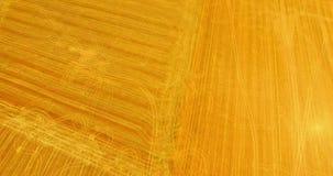 Jordbruksmark som delas på fyrkanter stock video