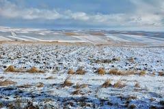 Jordbruksmark som täckas med snö Arkivfoto