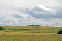 jordbruksmarker Arkivfoton