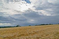 jordbruksmarker Arkivbilder