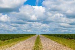 Jordbruksmarkgrusväg Arkivbilder