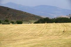 Jordbruksmarkhöstack Amerika Arkivfoto