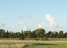 Jordbruksmarksikt i Nederländerna Royaltyfria Bilder