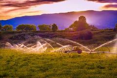 Jordbruksmarksolnedgång Arkivfoton