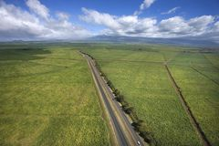 jordbruksmarkväg Arkivbilder