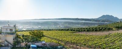 Jordbruksområde i Kreta Arkivfoto