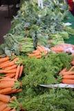 Jordbruksprodukterval Fotografering för Bildbyråer