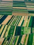 Jordbruksskifte Royaltyfri Fotografi