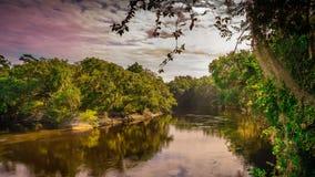 Jorddimma för historisk Suwannee flodotta fotografering för bildbyråer