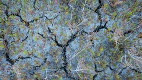 Jorden knäckas En torka i jordbruk royaltyfria foton