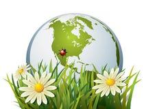 jordgräs Vektor Illustrationer
