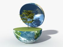 jordgreen Royaltyfri Fotografi