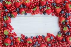 Jordgubbar, blåbär, hallon och Blackberry arkivfoton