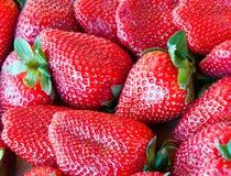 jordgubbar för bakgrundsmatserie Arkivfoton