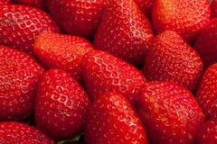 jordgubbar för bakgrundsmatserie Arkivfoto